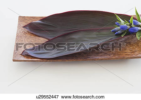 Picture of Leaves and flowers on wooden tray u29552447.