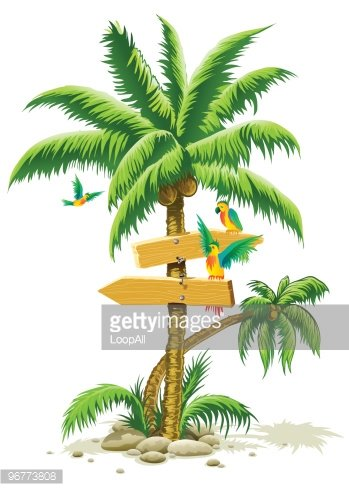 tropical palm tree with wooden signs and parrot birds.