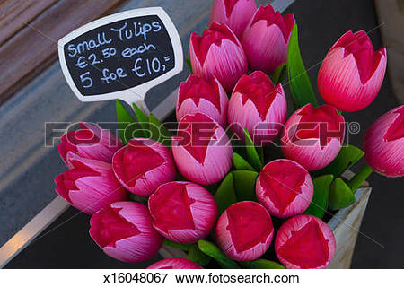 Picture of Netherlands, Delft, Souvenir Wooden Tulips x16048067.