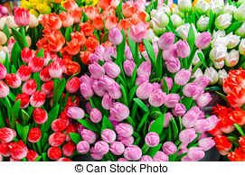 Stock Photography of wooden tulips in amsterdam souvenir shop.
