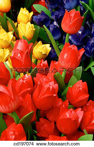 Stock Photo of Wooden tulips. Amsterdam. Holland cd197074.