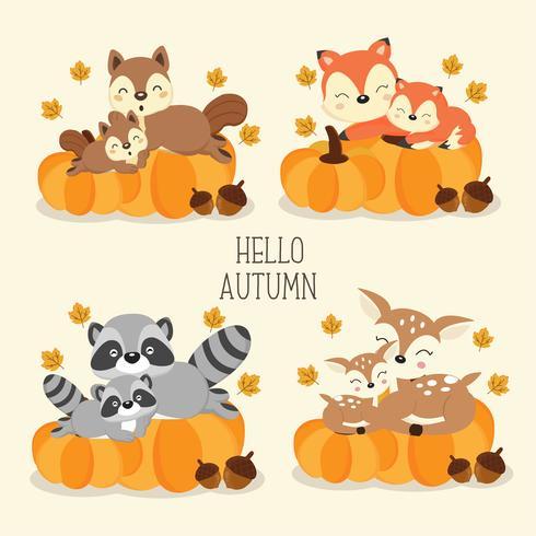 Cute woodland animals in Autumn..