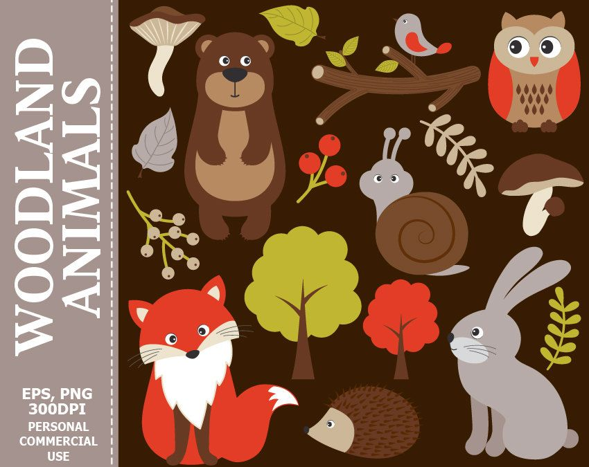 Woodland Animals Clip Art.