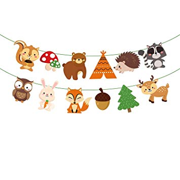 Amazon.com: Woodland Creature Birthday Party Supplies.