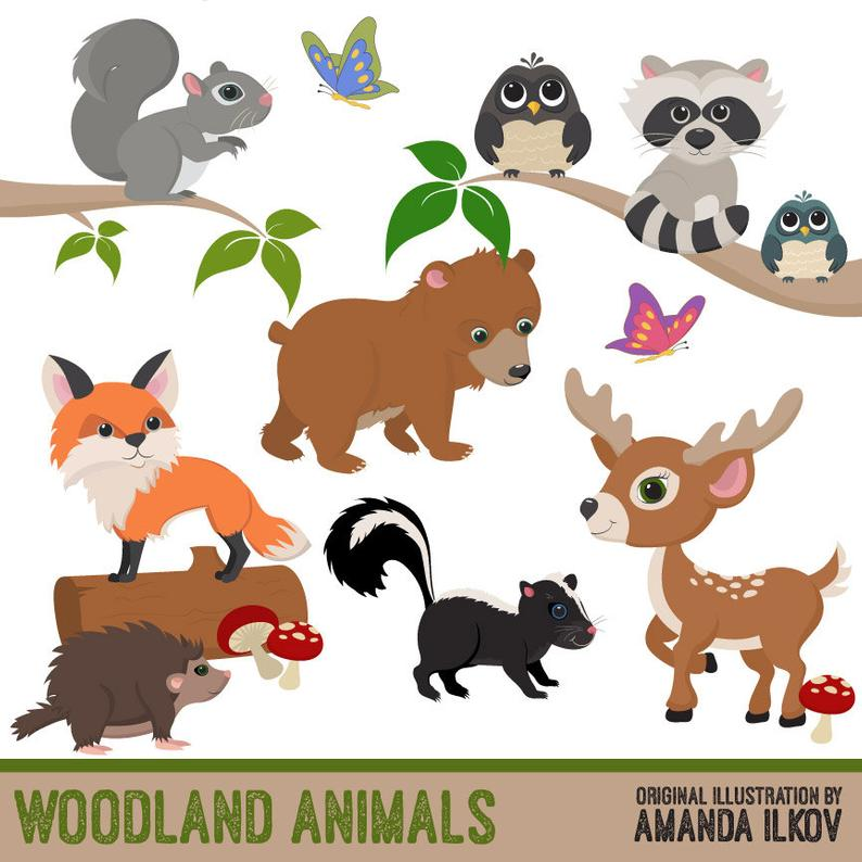 Premium Woodland Animal Clip Art, Woodland Animal Vectors.