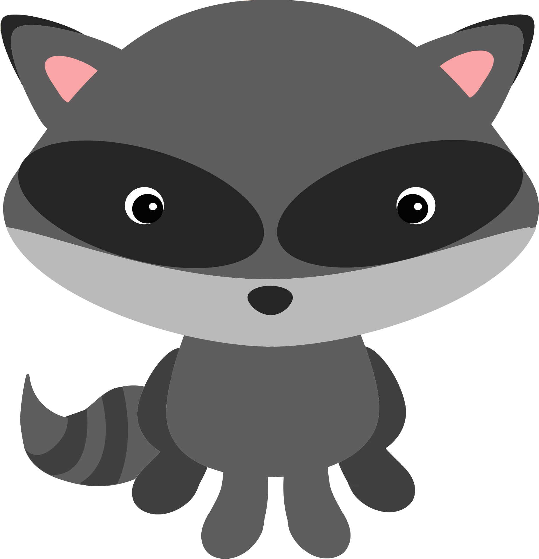 Download Raccoon T.
