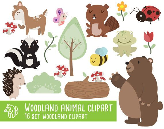 Woodland animals Clipart, Raccoon, Fox, Forest Friends.
