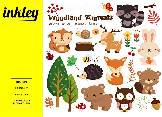 Woodland Animal Clipart, Woodland Animal Clip Art, Woodland Animal.