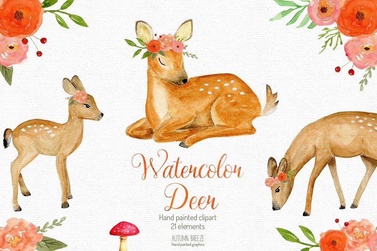 Watercolor baby deer clipart.