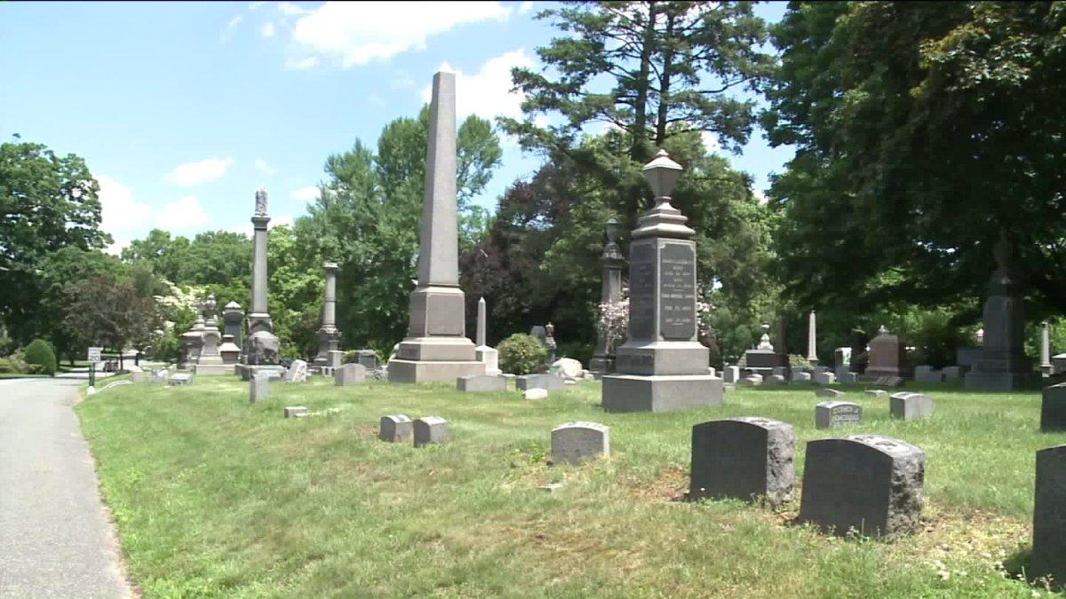 Essay on woodlawn cemetery.