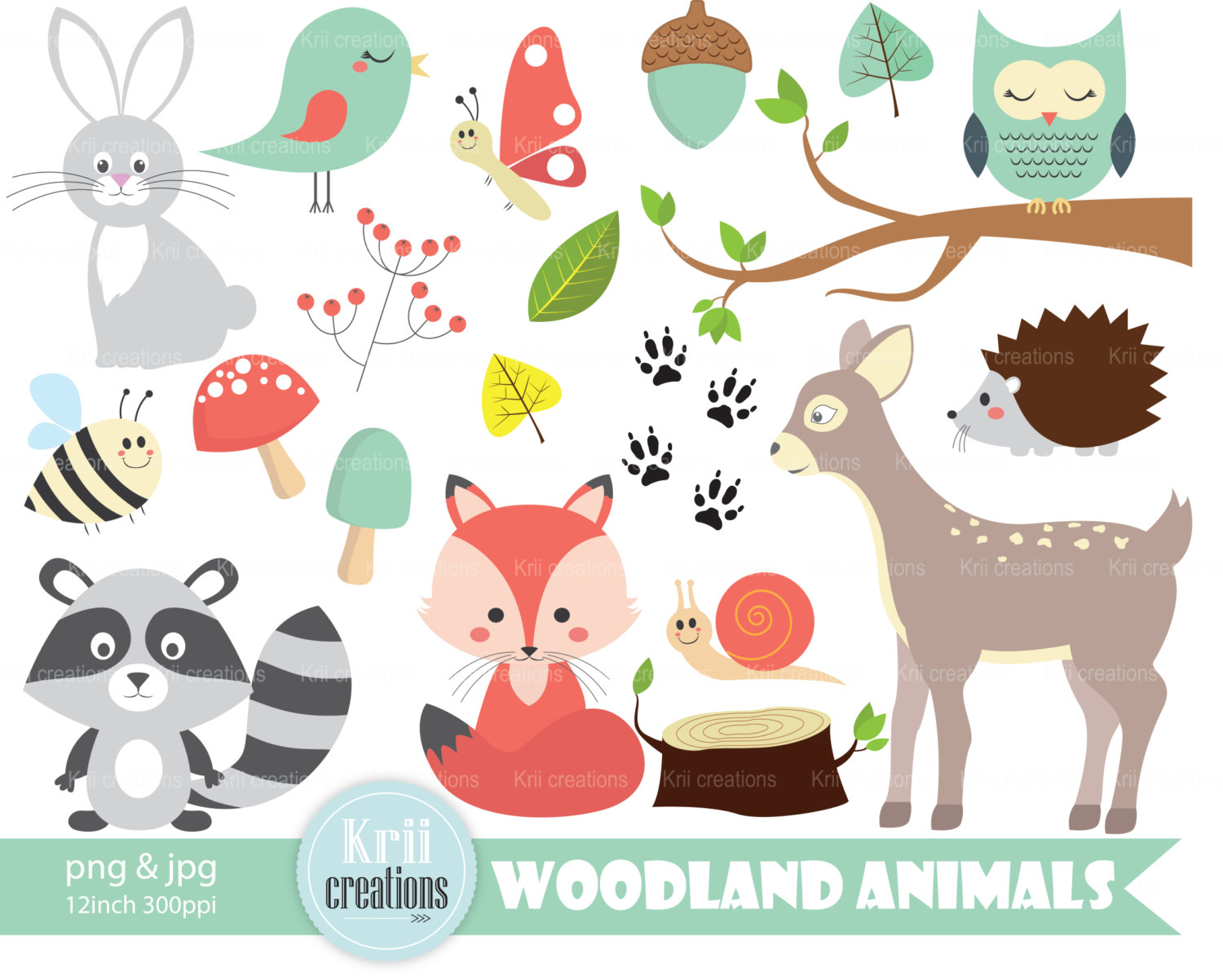 Woodland raccoon and owl clipart.
