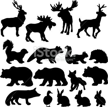 Silhouettes of a variety of woodland animals.