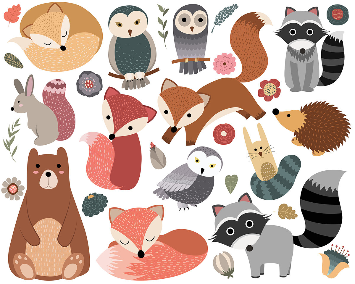 Woodland Critters Clip Art Set of 30 300 DPI PNG JPG and.