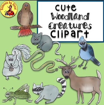 Whimsical Woodland FOREST ANIMALS CLIPART for Personal or Commercial Use.