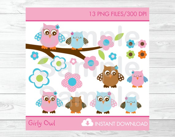 Details about Pink & Turquoise Woodland Owl Clipart.