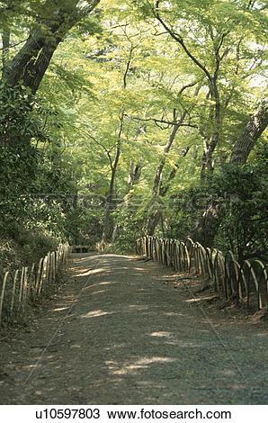 Stock Photo of A Woodland Path u10597803.