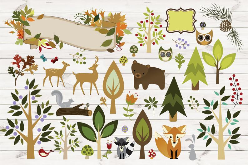 Woodland Forest Animals Clipart, PNG, Vector Clipart, Woodland Clip Art,  Forest Clip Art, Deer, Fox, Raccoon owls bear, rabbit, birds.