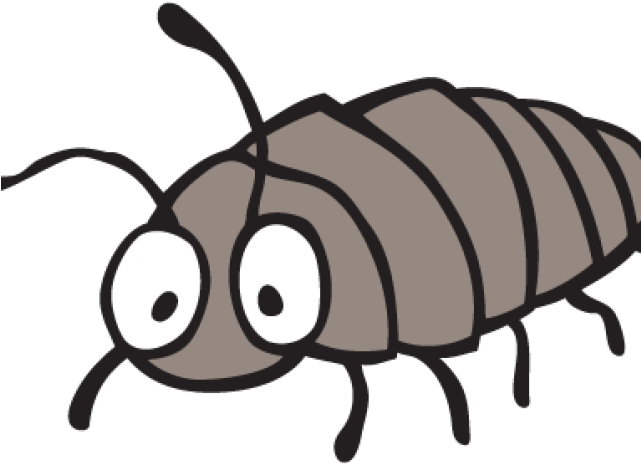 Bugs Clipart Woodlouse.
