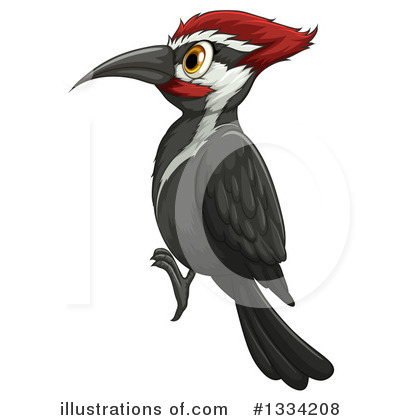 Woodpecker Bird Clipart.