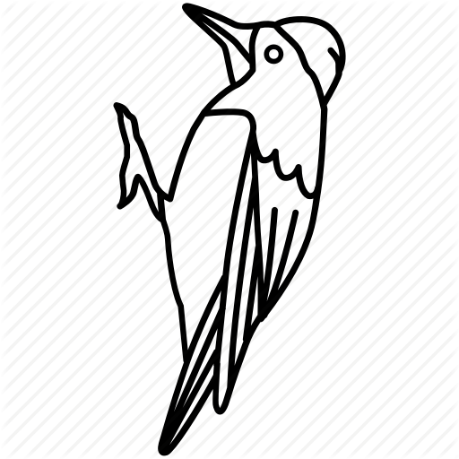 \'Birds Outlines\' by Jisun Park.