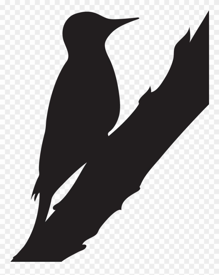 Woodpecker Silhouette.