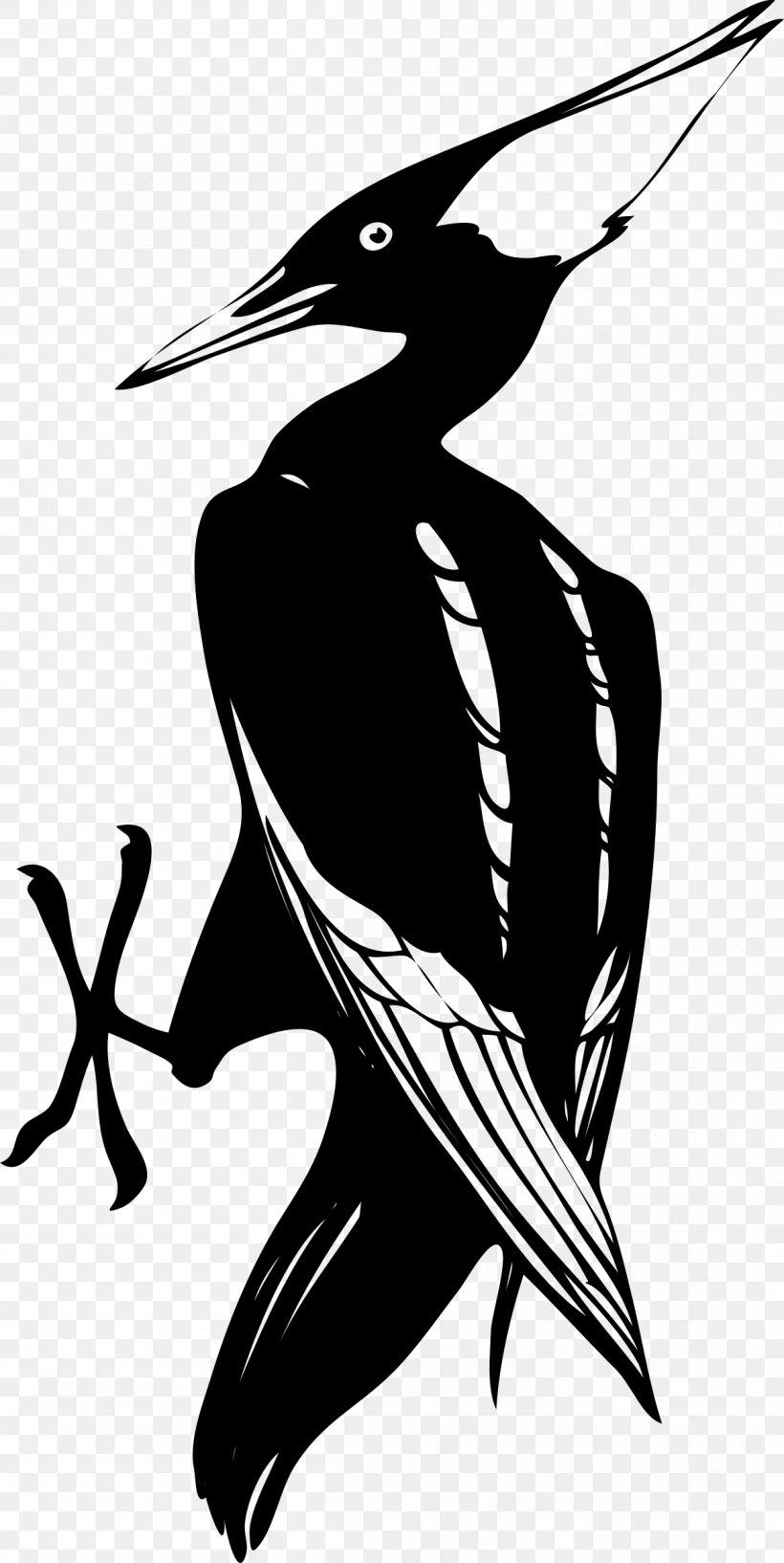 Woody Woodpecker Ivory.