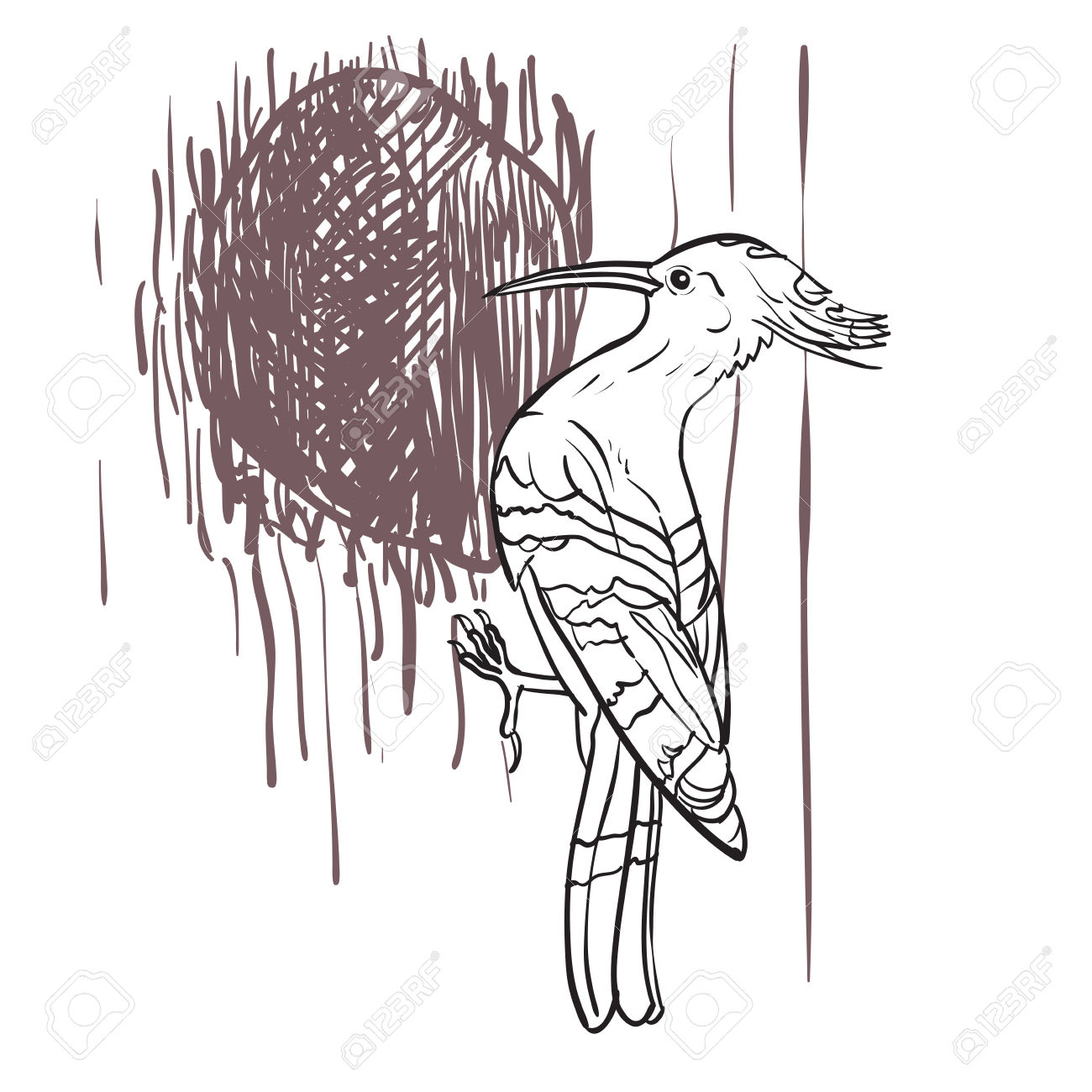 Drawing Of Woodpecker Bird With Hole On Tree Royalty Free Cliparts.