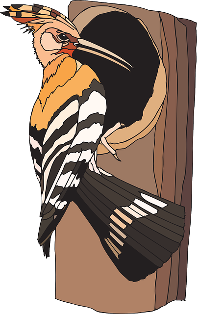 Free vector graphic: Woodpecker, Bird, Sitting, Tree.