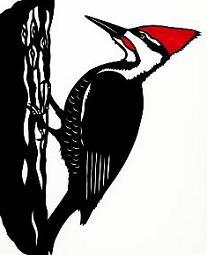 Free Woodpecker Cliparts, Download Free Clip Art, Free Clip.