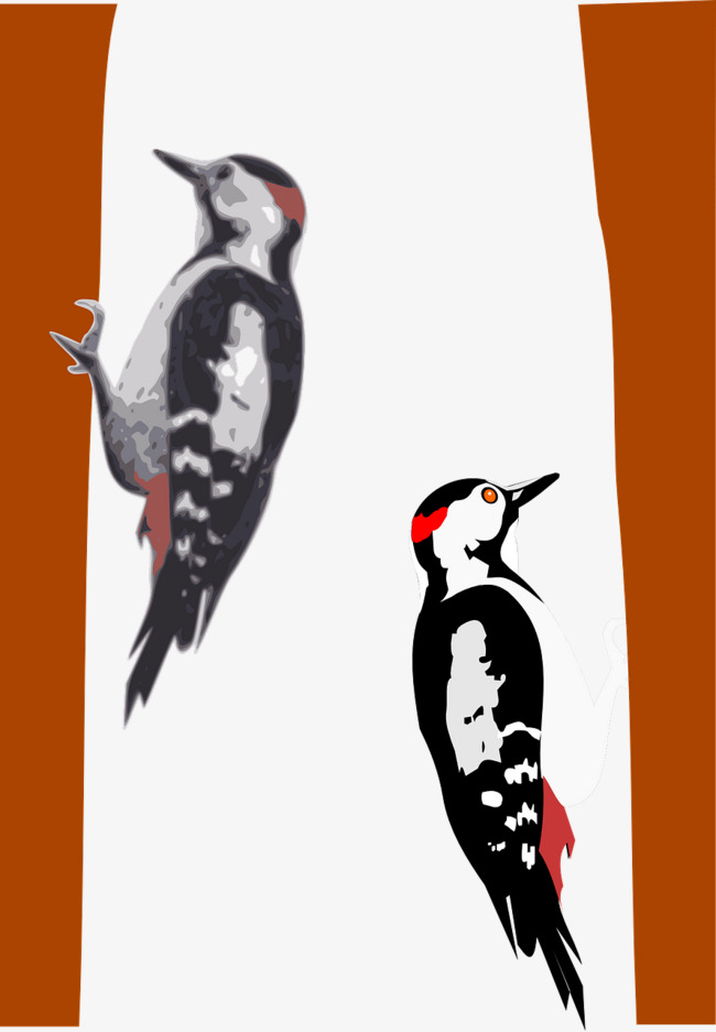 Woodpecker In The Tree Png & Free Woodpecker In The Tree.png.