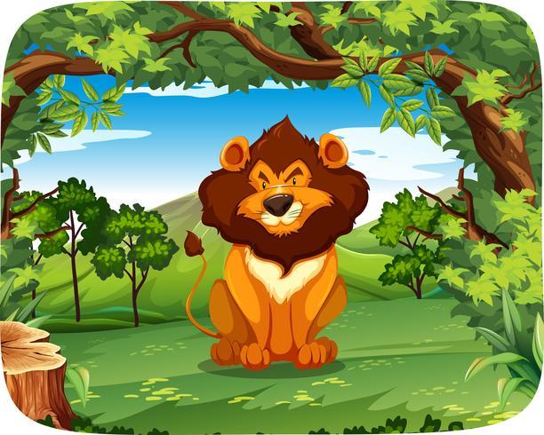Lion in wood scene.