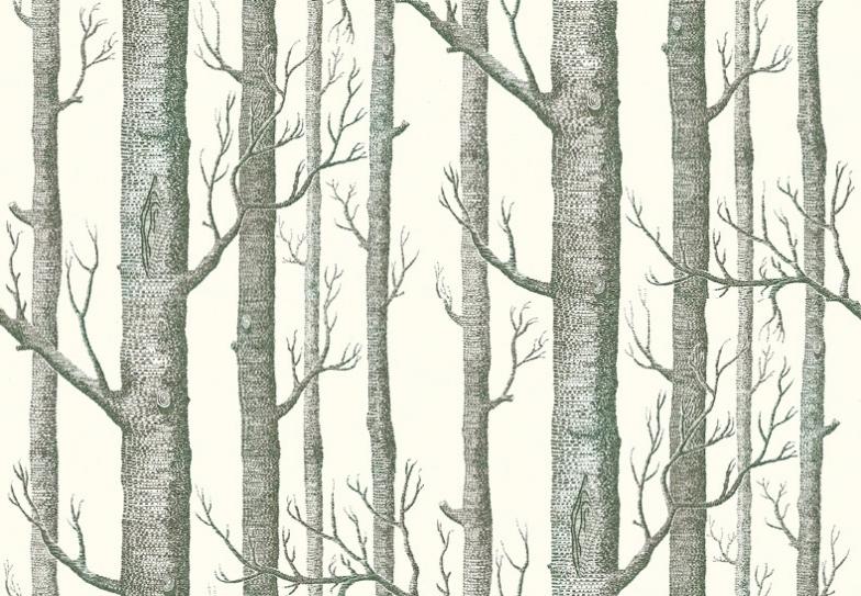 Cole son birch tree clipart.