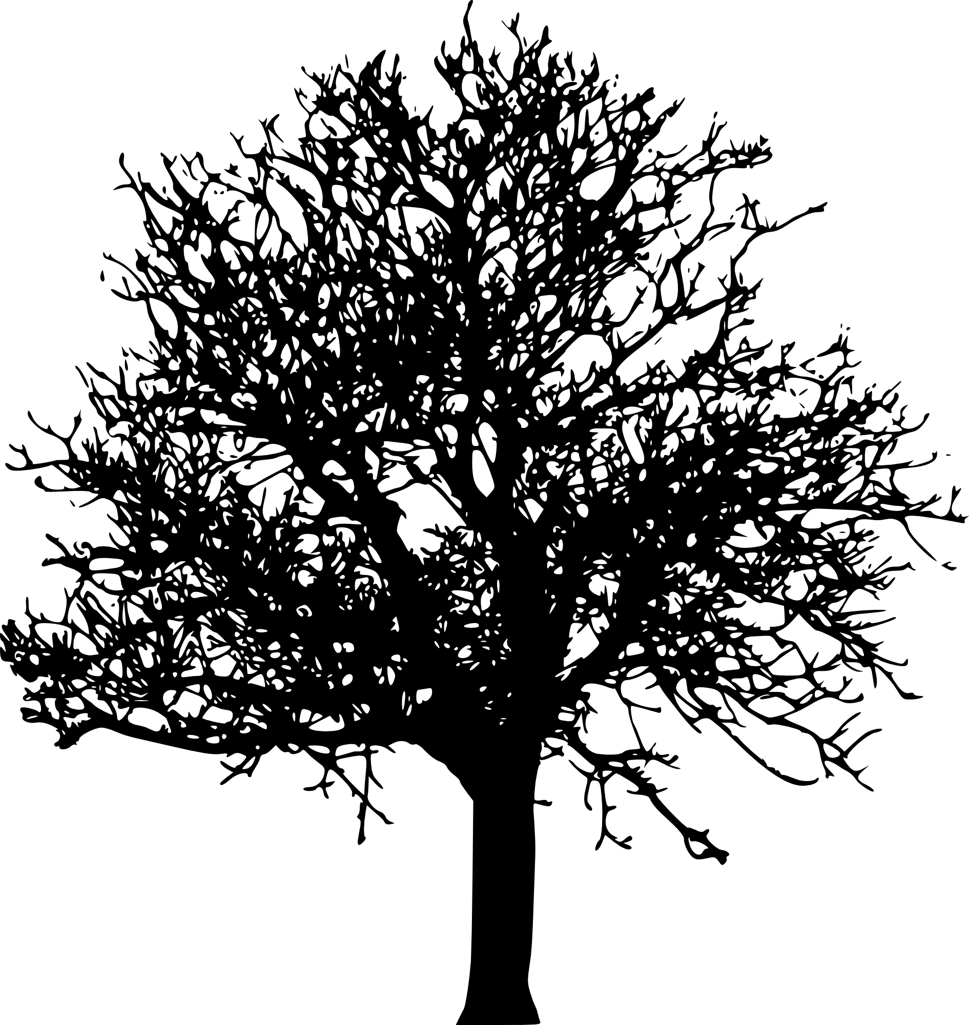 45 Tree Silhouettes PNG Transparent Background.