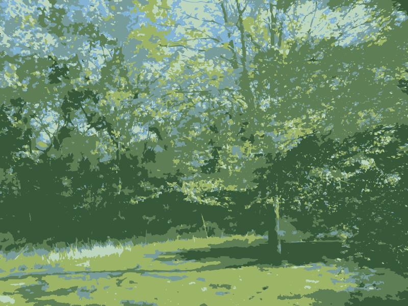 Woods Clip Art Download.