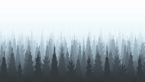 Coniferous forest silhouette template. Woods illustration.