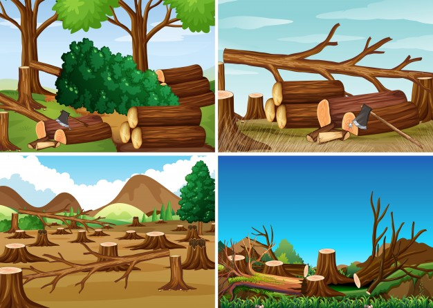 Deforestation scenes with chopped woods Vector.