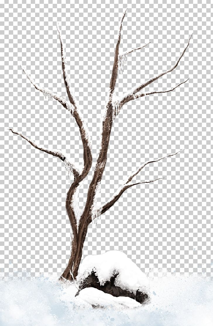 Branch Tree Snow PNG, Clipart, Art, Black And White, Branch.