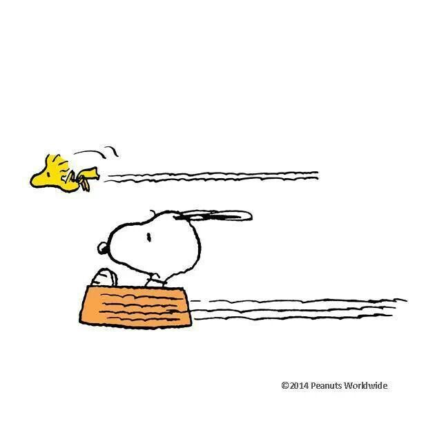Snoopy..Flying Dish Ace! With Woodstock!.