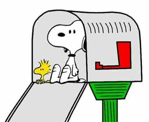 Snoopy and Woodstock sitting in a mailbox.
