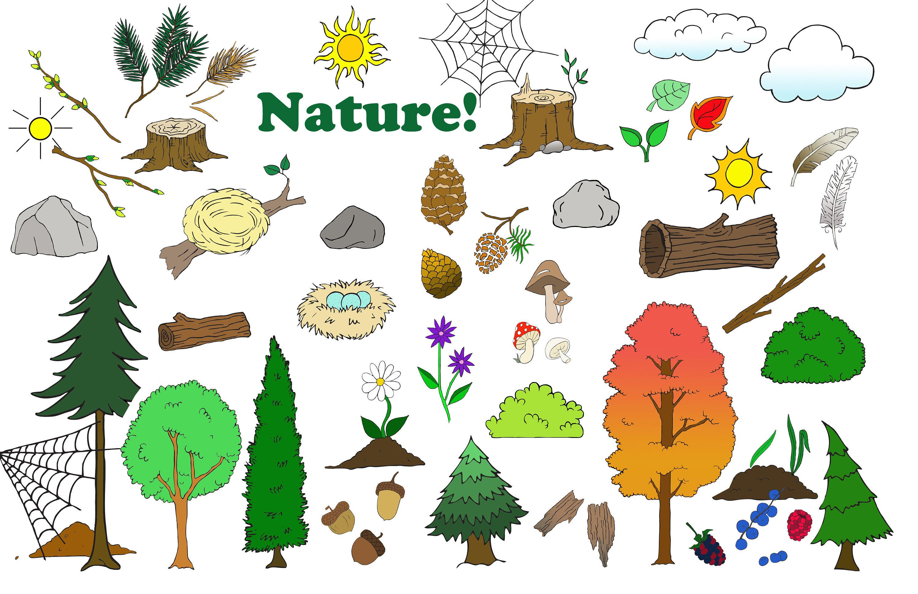 Camping Clipart, Animal Clipart.
