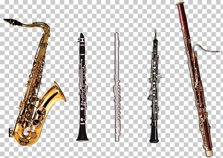 Woodwind instrument Musical Instruments Clarinet, musical.