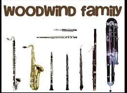 Image result for clipart instrument families.