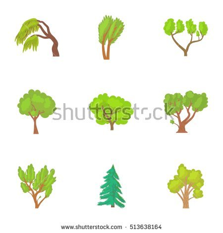 Woody Plants Stock Images, Royalty.