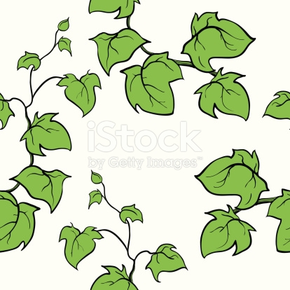 Ivy Vector Hand Drawn Seamless Pattern Climbing Woody Plant stock.