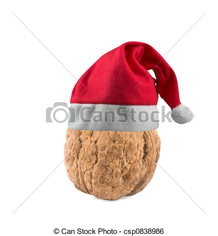 Stock Image of nut in christmas hat.