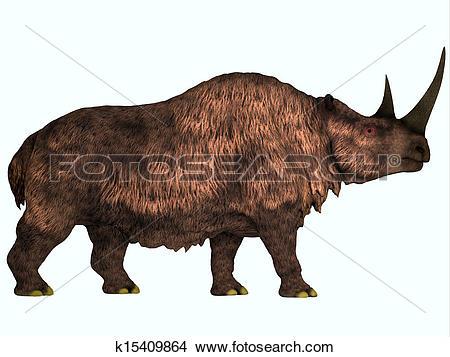 Drawings of Woolly Rhino on White k15409864.