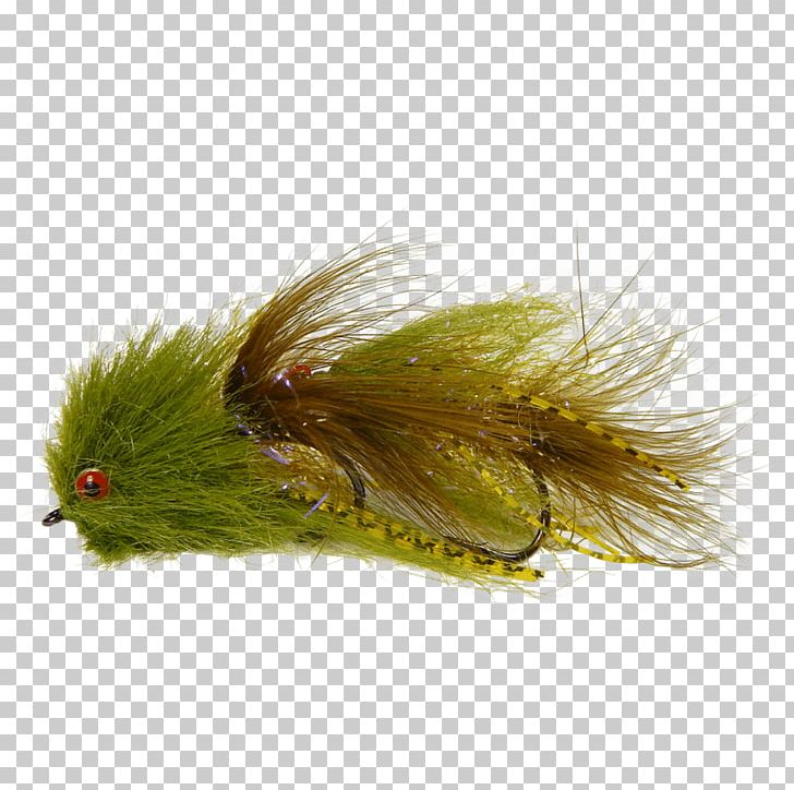 Fly Fishing Streamer Woolly Bugger Muddler Minnow PNG.
