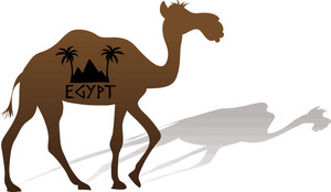 Clip art image of a camel walking with the word Egypt on his.