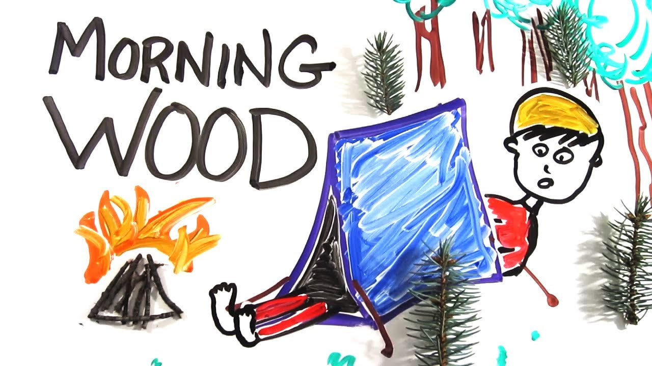 The Science Of Morning Wood: Electrical Impulses In Brain Increase.