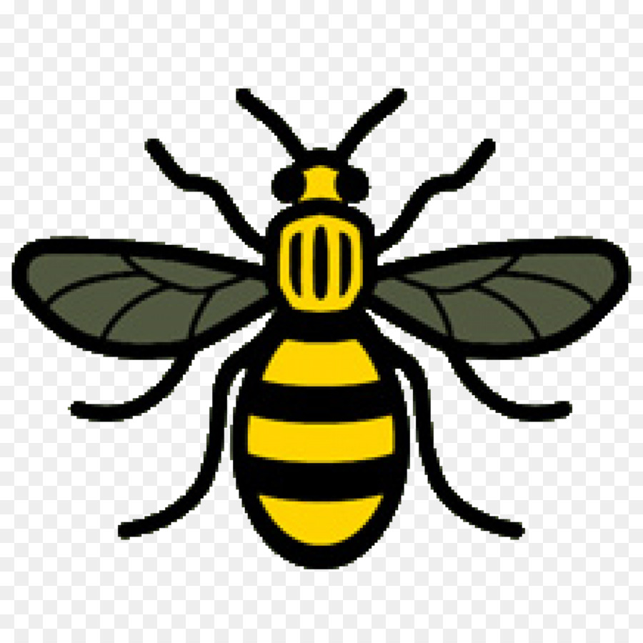 Manchester Bee Background.